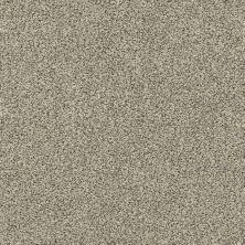 Shaw Floors Creative Elegance (floors To Go) Grand Feelings II Linen 00110_7B3I9