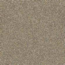 Shaw Floors Creative Elegance (floors To Go) Grand Feelings II Gold Rush 00200_7B3I9