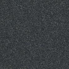 Shaw Floors Creative Elegance (floors To Go) Grand Feelings II Blue Wing 00310_7B3I9