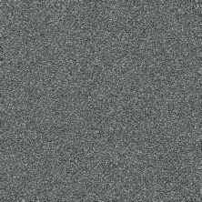 Shaw Floors Creative Elegance (floors To Go) Grand Feelings II Slate 00401_7B3I9