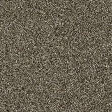 Shaw Floors Creative Elegance (floors To Go) Grand Feelings II Mahogany 00702_7B3I9