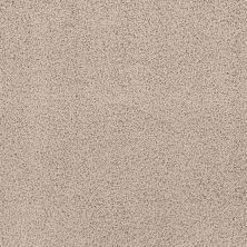 Shaw Floors Infinity Soft Heavenly Touch Natural Beauty 00721_7B6Q4