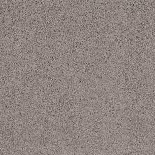 Shaw Floors Infinity Soft Heavenly Touch Ridgeview 00751_7B6Q4