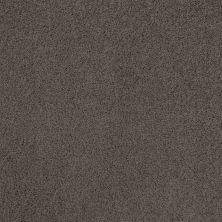 Shaw Floors Infinity Soft Heavenly Touch Burma Brown 00752_7B6Q4
