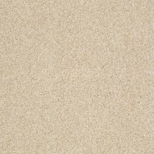 Shaw Floors Infinity Soft Zymes Lg Yearling 00107_7E0D4
