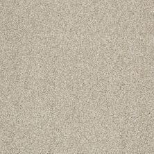 Shaw Floors Infinity Soft Zymes Lg Shetland 00108_7E0D4