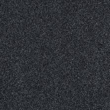 Shaw Floors Infinity Soft Zymes Lg Bleu Du Maine 00403_7E0D4