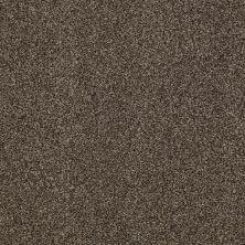 Shaw Floors Infinity Soft Zymes Lg Bourbonnais Grey 00505_7E0D4