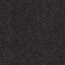 Shaw Floors Infinity Soft Zymes Lg Black Sheep 00508_7E0D4