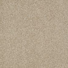 Shaw Floors Infinity Soft Zymes Lg Panama 00700_7E0D4