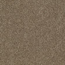 Shaw Floors Infinity Soft Zymes Lg Welsh Hill 00704_7E0D4