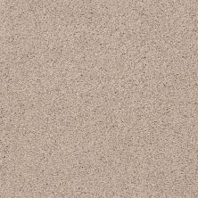 Shaw Floors Infinity Soft Heavenly Touch Lg Natural Beauty 00721_7E0F2
