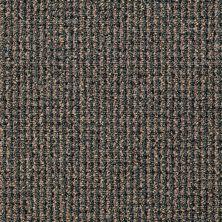 Philadelphia Commercial Floors To Go Commercial Harmonic Dream Echo 49301_7M649