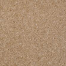 Shaw Floors Grand Mosaic Desert Dune 83152_7P083