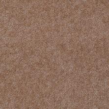 Shaw Floors Grand Mosaic Dallas Dust 83761_7P083
