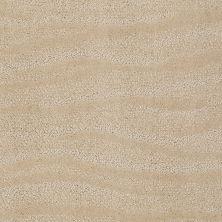 Anderson Tuftex Creative Elegance (floors To Go) Henderson Humus 00123_822AF