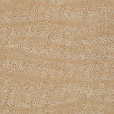 Anderson Tuftex Creative Elegance (floors To Go) Henderson Chamois 00221_822AF