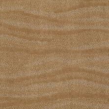 Anderson Tuftex Creative Elegance (floors To Go) Henderson Tiger Eye 00222_822AF
