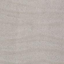 Anderson Tuftex Creative Elegance (floors To Go) Henderson Silver Leaf 00541_822AF