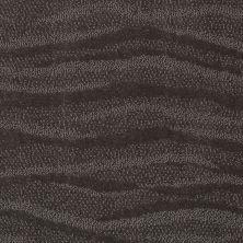Anderson Tuftex Creative Elegance (floors To Go) Henderson Smoked Pearl 00559_822AF
