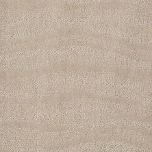 Anderson Tuftex Creative Elegance (floors To Go) Henderson Agate 00712_822AF