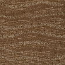 Anderson Tuftex Creative Elegance (floors To Go) Henderson Bronze Glow 00727_822AF