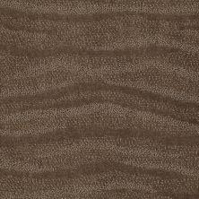 Anderson Tuftex Creative Elegance (floors To Go) Henderson Vicuna 00736_822AF