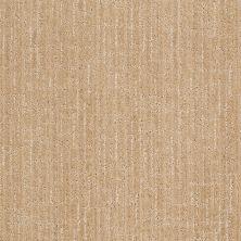 Anderson Tuftex Stainmaster Flooring Center Happy Design Cashmere Sweater 00122_830DF