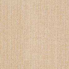 Anderson Tuftex Stainmaster Flooring Center Happy Design Candleglow 00212_830DF