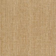 Anderson Tuftex Stainmaster Flooring Center Happy Design Banana Split 00223_830DF