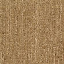 Anderson Tuftex Stainmaster Flooring Center Happy Design Vintage Gold 00234_830DF