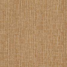 Anderson Tuftex Stainmaster Flooring Center Happy Design Biscuit 00272_830DF
