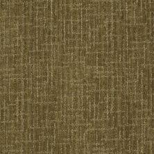 Anderson Tuftex Stainmaster Flooring Center Happy Design Garden Medley 00325_830DF
