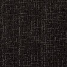 Anderson Tuftex Stainmaster Flooring Center Happy Design Magic Night 00348_830DF
