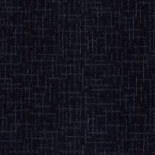 Anderson Tuftex Stainmaster Flooring Center Happy Design Blueberry Muffin 00448_830DF