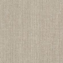 Anderson Tuftex Stainmaster Flooring Center Happy Design Crushed Ice 00572_830DF