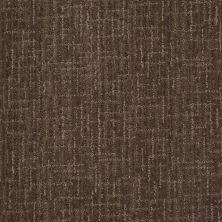Anderson Tuftex Stainmaster Flooring Center Happy Design Chinchilla 00579_830DF