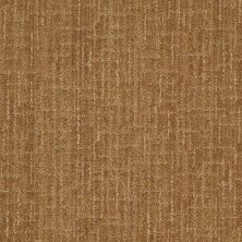 Anderson Tuftex Stainmaster Flooring Center Happy Design French Horn 00726_830DF