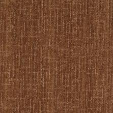 Anderson Tuftex Stainmaster Flooring Center Happy Design Autumn Bark 00765_830DF