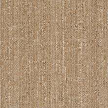 Anderson Tuftex Stainmaster Flooring Center Happy Design Verona Beach 00772_830DF