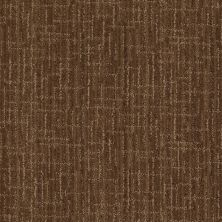 Anderson Tuftex Stainmaster Flooring Center Happy Design Buffalo Trail 00778_830DF