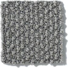 Anderson Tuftex Shaw Design Center Beyond Beauty Granite 00557_835SD