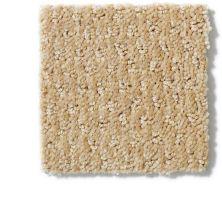 Anderson Tuftex Shaw Design Center Savannah Lane Golden Fleece 00263_850SD