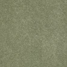 Anderson Tuftex SFA Flora Applemint 00333_853SF