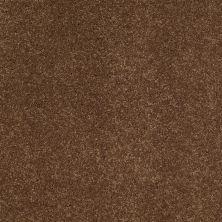 Anderson Tuftex SFA Flora Vintage Brown 00775_853SF