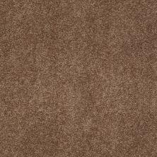 Anderson Tuftex SFA Flora Mocha Latte 00776_853SF