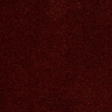 Anderson Tuftex SFA Flora Fire Brick 00888_853SF