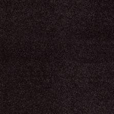 Anderson Tuftex SFA Flora Wild Plum 00999_853SF