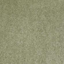 Anderson Tuftex SFA Gleeful Applemint 00333_854SF