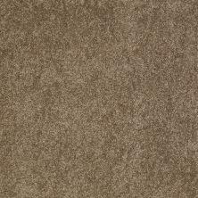 Anderson Tuftex SFA Gleeful Phoenix Fossil 00536_854SF